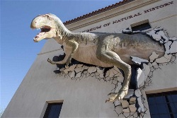 Phoenix Natural History Museum