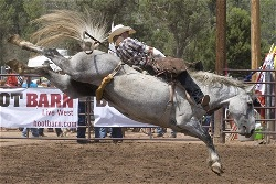 Payson Arizona World's Oldest Rodeo